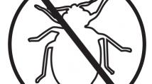 Bed Bug Kill (2013-14)