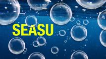 Team Seasu (2018-19)